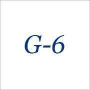 01_G-6